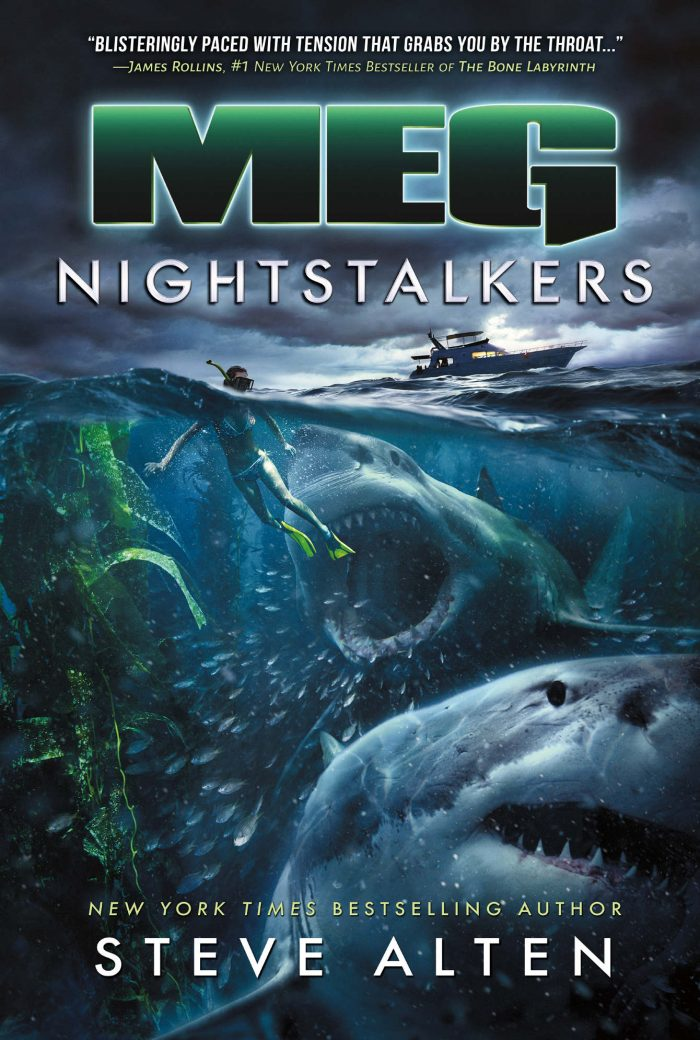 The Meg Nightstalkers book cover