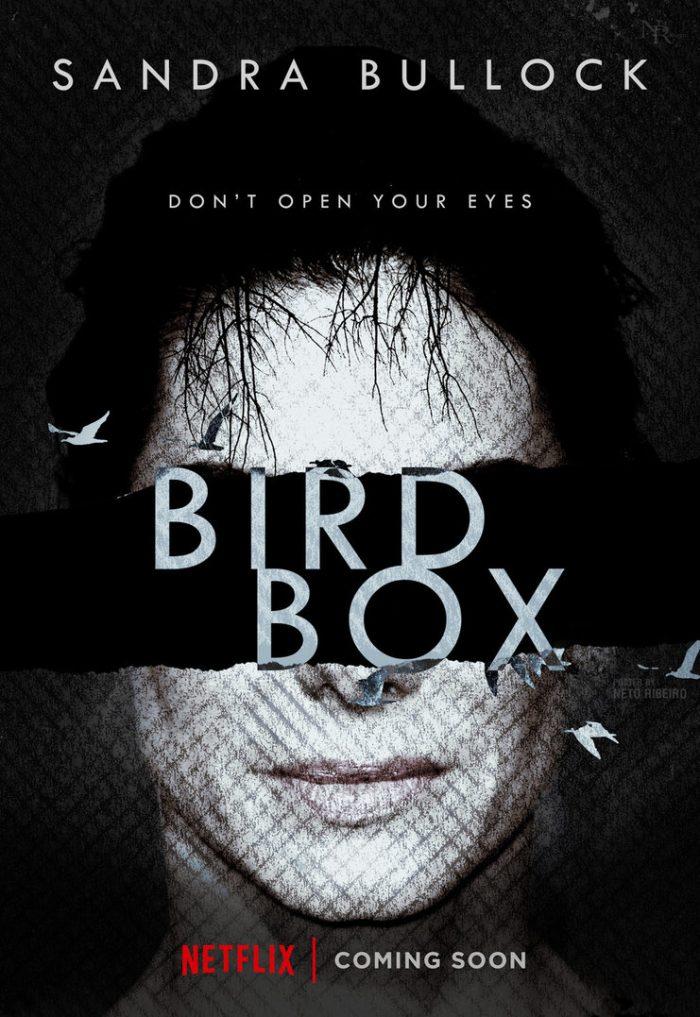 bird-box-trailer-1