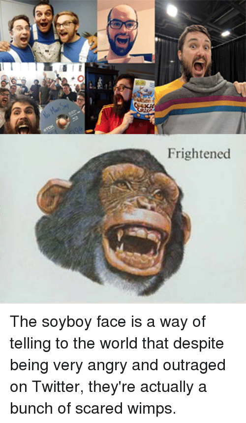 [Image: frightened-the-soyboy-face-is-a-way-of-t...942793.png]